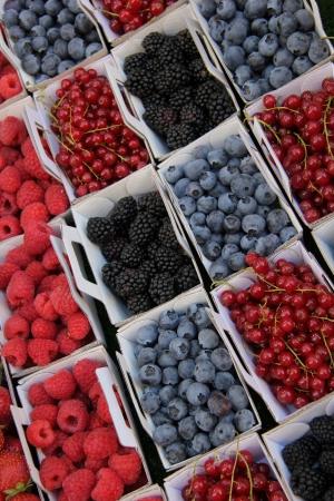 rubus: blueberries, rubus, red currant and raspberries, displayed in cardboard boxes
