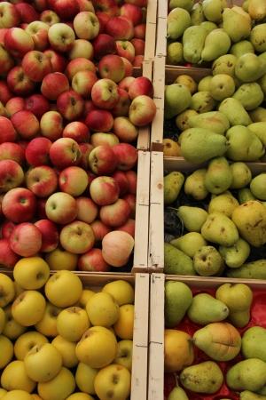 Varios tipos de manzanas y peras en un mercado provenzal en Francia Foto de archivo - 15268627