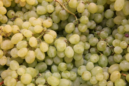 Fresh grapes at a Provencal market in France Stock Photo - 15268723