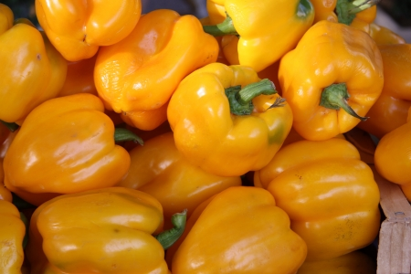 shinny yellow bell peppers at a French market photo