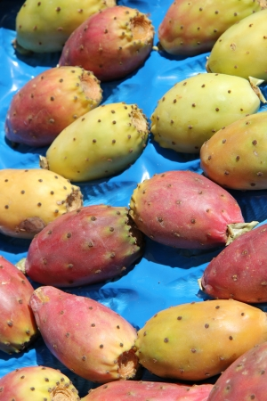 Fresh cactus figs or opuntia at a local market in the Provence, France Stock Photo - 15269376