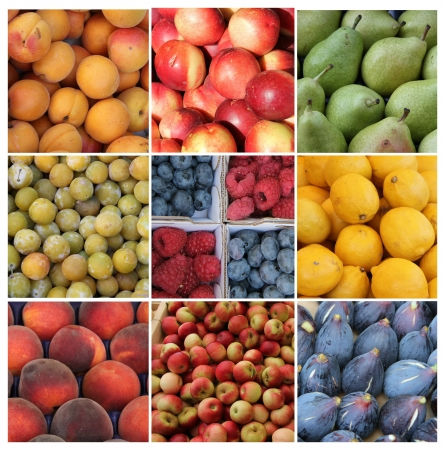Nine different XL images of fruits in various colors Stock Photo - 15357558