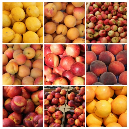 Nine different XL images of red and yellow fruits photo