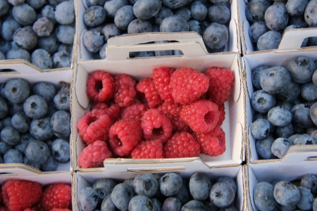 blueberries and raspberries, displayed in cardboard boxes Stock Photo - 15405375