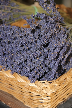 dry provisions: Small bouquets of lavender for sale in a wicker basket Stock Photo