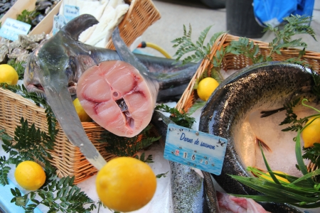 Luxury assortment of fish at a market in the Provence, France photo