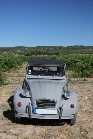 Vintage French car in a vineyard in the Provence photo