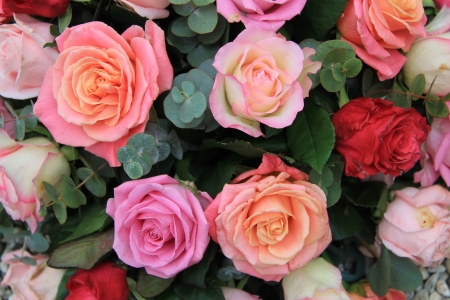 混合のバラの花束ピンクとオレンジ色の異なった色合いで