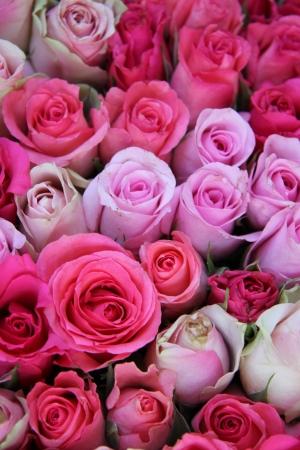 花の結婚式の装飾のピンクの部分の異なった色合いでバラのグループ
