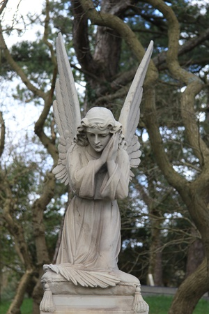 A big angel guards over a grave on an ancient cemetery photo