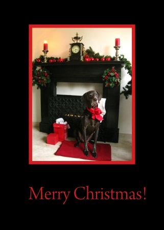 Ready to print Christmas greeting: german shorthaired pointer and fireplace photo