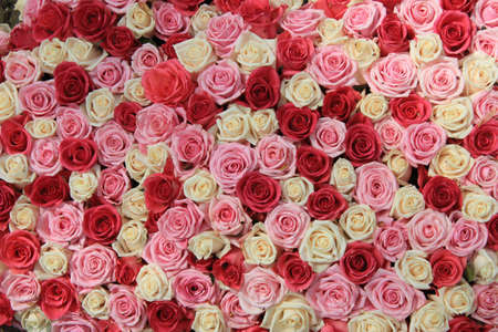 White and two shades of pink roses in a flower arrangement photo
