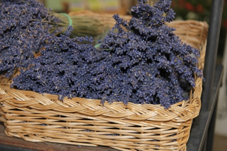 Small bouquets of lavender for sale in a wicker basket photo