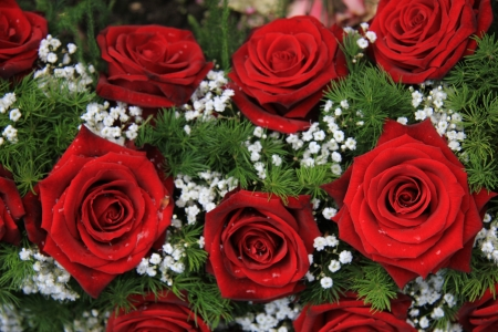 Red roses and white gypsophila in a flower arrangement