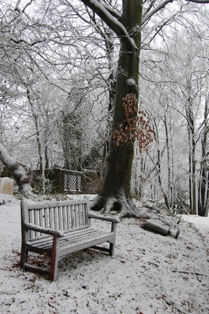 Wooden bench in a snow covered winter forest photo