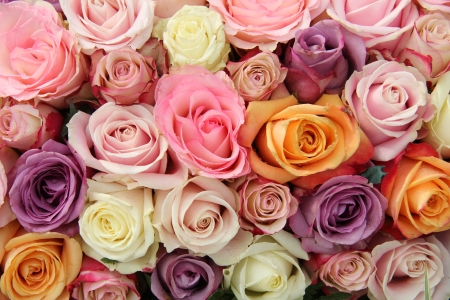 Mixed roses in various pastel colors in a wedding arrangement photo