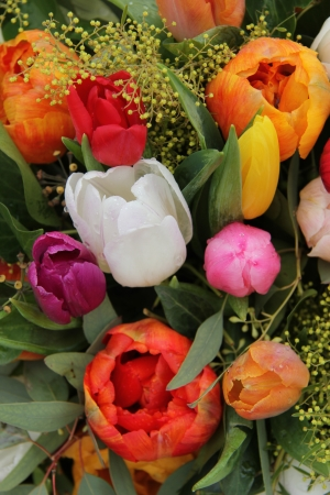 Bright colored tulips in a spin bouquet photo