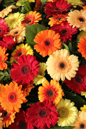 Gerbera flower arrangement in red, orange and yellow photo