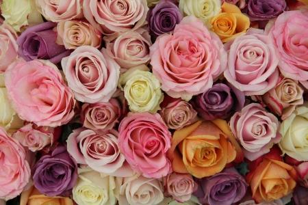 mujer con rosas: Rosas mezcladas en diferentes colores pastel en un arreglo de boda Foto de archivo