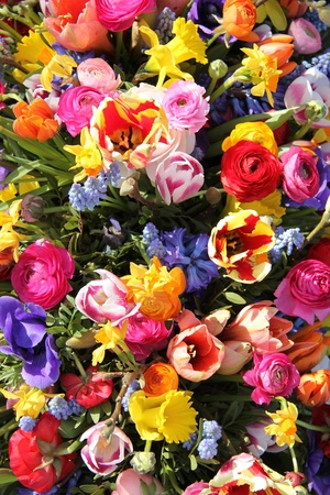 Mixed spring flowers in an arrangement, bright colors photo