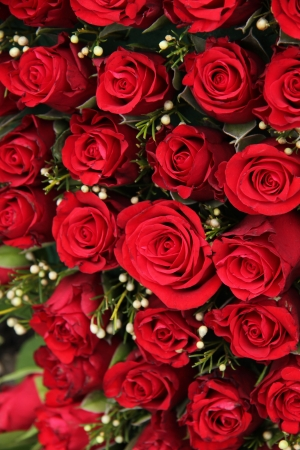 Group of red roses and small white berries, wedding decorations photo