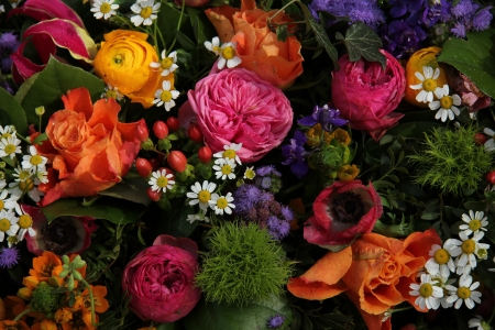matricaria: Mixed spring bouquet in various bright colors Stock Photo