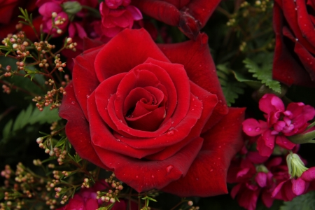 Big Red Rose In A Mixed Rose Bouquet, Wedding Centerpiece Stock ...
