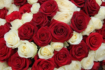 Red and white roses in a floral wedding centerpiece Stock Photo - 20720037