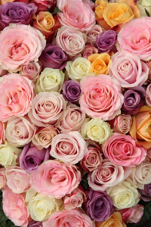 Pastel roses in a wedding arrangement Stock Photo