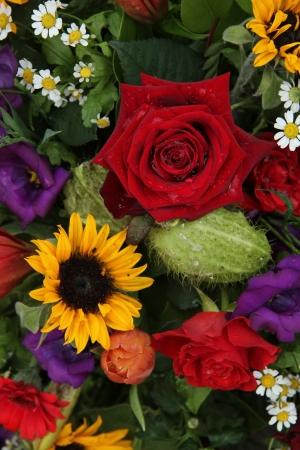 matricaria: Mixed floral arrangement in bright colors