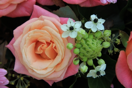Two toned pink roses and pink gerberas in a bridal flower arrangement photo