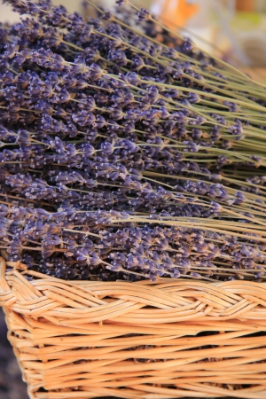 dry provisions: Lavender in a wicker basket in the Provence, France