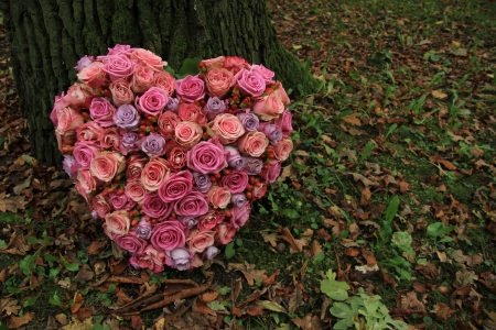 Heart shaped sympathy flower arrangement near a tree: different shades of pink roses
