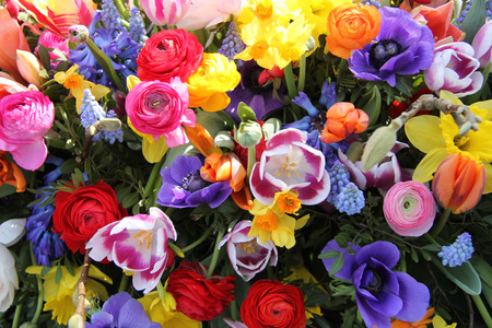 Spring Flowers in a multicolored mixed bouquet photo