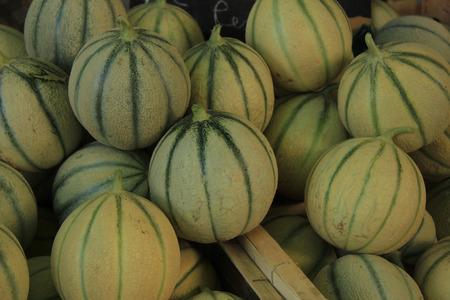 Melons at a Provencal market Stock Photo