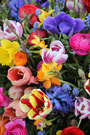 mixed flower bouquet: Mixed spring flowers in an arrangement, bright colors