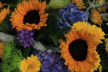 yelllow: blue hydrangea and yelllow sunflowers in a colorful wedding arrangement Stock Photo