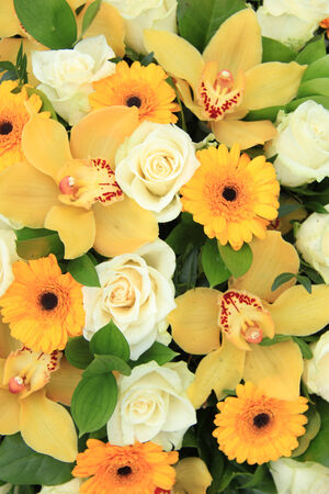 Gerberas and roses in bright colors in a bridal bouquet stock photo cymbidium orchids gerberas and roses in yellow and white in a bridal bouquet photo mightylinksfo