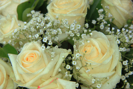White roses in a bridal bouquet photo