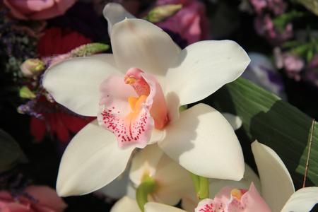 Cymbidium orchid in a bridal bouquet photo