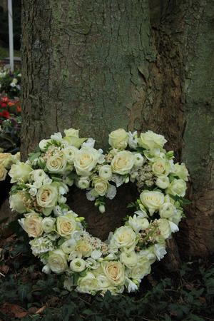 sympathy: Heart shaped sympathy flowers near a tree