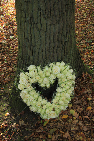 sympathy: white roses in a heart shaped sympathy arrangement Stock Photo