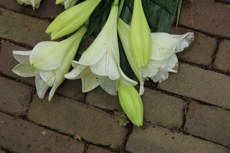 sympathy: white tiger lilies in a sympathy arrangement