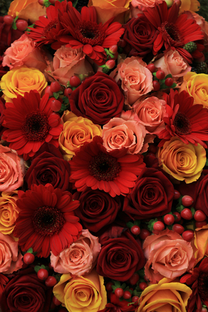 rose: Mixed rose wedding arrangment in red, pink, orange and yellow