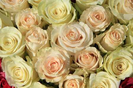 centerpiece: Roses in different shades of pink in a big wedding centerpiece Stock Photo