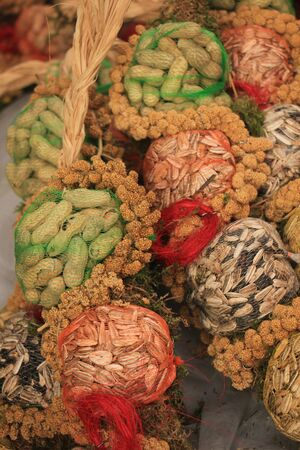 netting: Bird food in netting for the winter