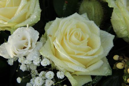 dew drop: White dew drop rose in a wedding bouquet