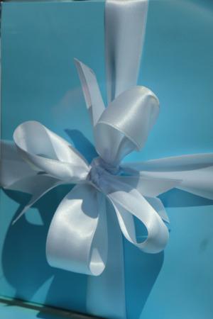 giftbox: White satin bow on blue giftbox