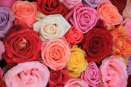 mixed marriage: Multicolored roses in a floral wedding decoration Stock Photo