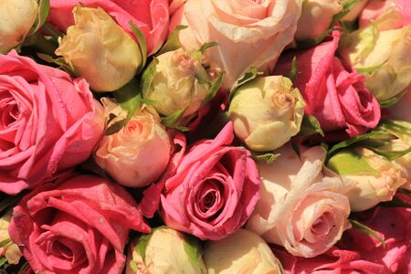 mixed marriage: Mixed pink roses in a floral wedding decoration Stock Photo